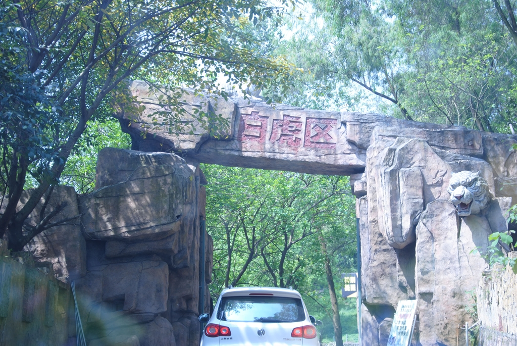 重庆永川野生动物园-车与我