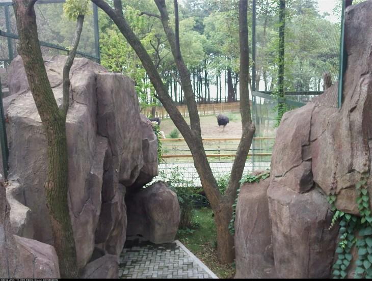 武汉动物园  查看全部 11张照片 目的地介绍 武汉动物园坐落在武汉市