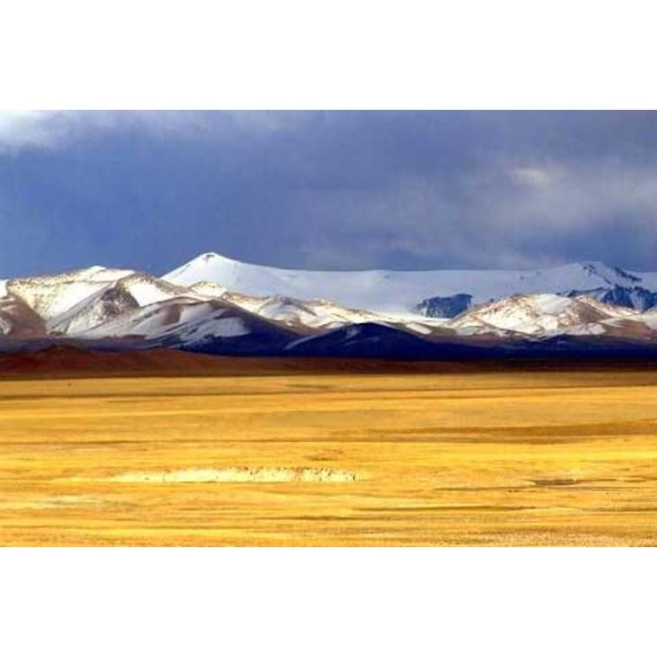 格尔木市位于海西蒙古族藏族自治州境南部,西接新疆自治区,南与西藏自治区毗邻。市府距州府驻地338千米,距省会西宁市710千米。地处青藏高原腹部,幅员辽阔,由柴达木盆地中南部和唐古拉山镇两块互不相连、中间相隔400多公里的辖区组成。格尔木(又作高鲁木斯、郭里峁、噶尔穆)是蒙古语译音,意为河流密集的地方河流众多。古为羌地,自东晋至清历属吐谷浑、威定县、吐蕃王国、角厮罗政权、吐蕃等处宣慰司、曲先卫、钦差办理青海蒙古番子事务大臣。 格尔木是前往西藏、敦煌和丝绸之路的必经之地,是内地游客进藏前抵达的最后一