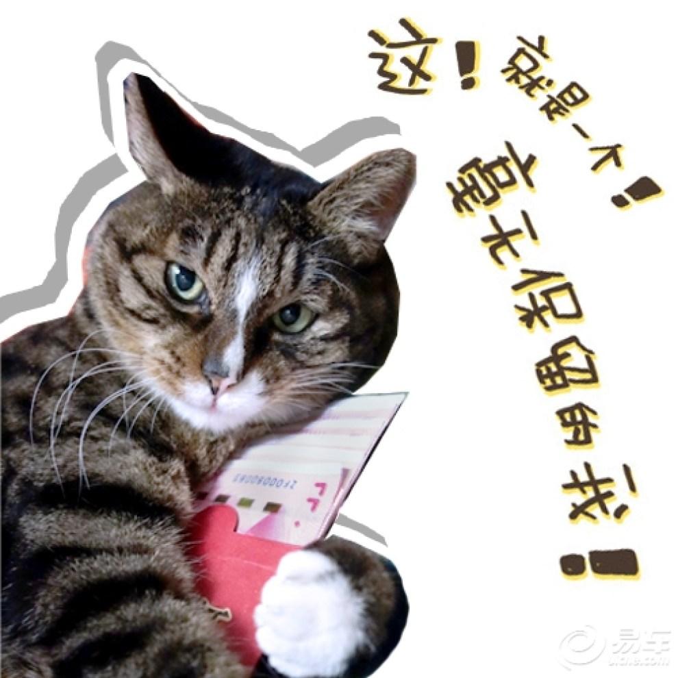 【【网红豹爷】表情帝豹爷凭表情大仙包表情包什么字体带表情再度走红1图片