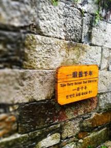 #一路有你,无自由不旅途# 雨夜----镇江西津...