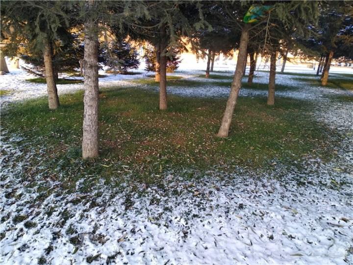 【吉林市长安车友会】北国江城吉林市第一场雪