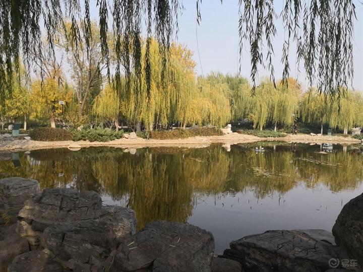【无锡长安SUV联盟】大白陪我游览西柳公园