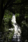 【孕妇游记】这个季节,灞河湿地公园你可别错过