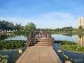 【大连长安车友俱乐部675】驾75游湿地公园,画风十足