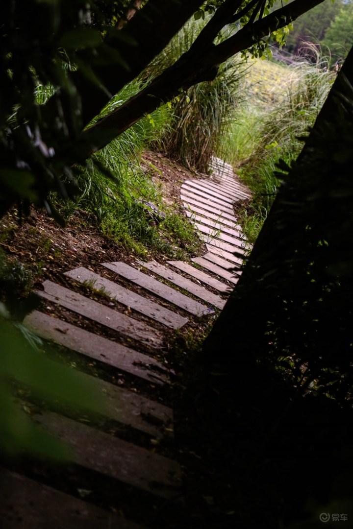 长广溪湿地公园一游