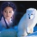 白狐055