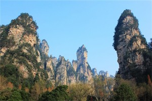 扩大的盆景 缩小的仙山 张家界游记